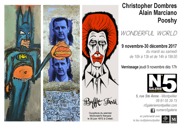 Carton2_N5_galerie_carton_Alain_Marciano_Christopher_Dombres_Pooshy_exposition_art_contemporains_Wonderful_world_Montpellier_2017