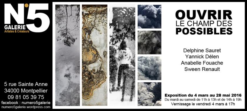 N°5 GALERIE - MONTPELLIER exposition photographie mars 2016 - Ouvrir le champ des possibles - Delphine Sauret - Anabelle Fouache - Sween Renault - Yannick Delen