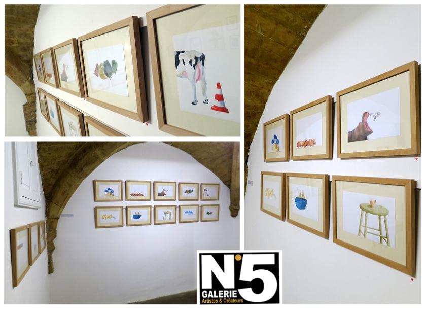 N5_GALERIE_exposition_dessin_aquarelle_Roman_Viguier_Montpellier_septembre_2017