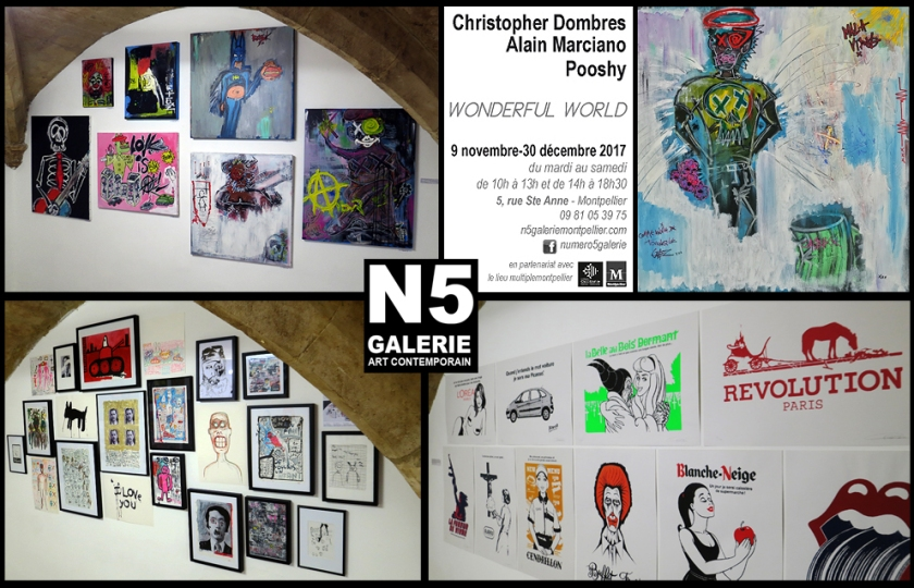 N5_galerie_exposition_Christopher Dombres_Pooshy_Alain Marciano_peinture_dessin_serigraphie_Montpellier_2017