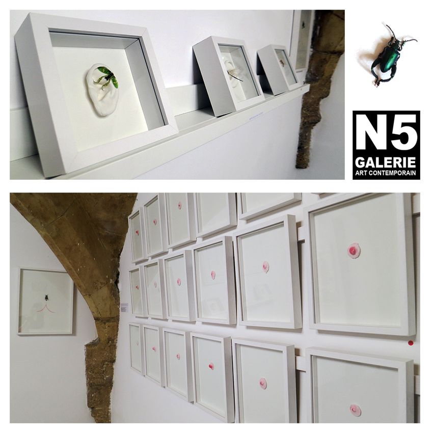 N5 galerie_Cecile Hug_exposition_Anatomies_Montpellier_mars_avril_2018