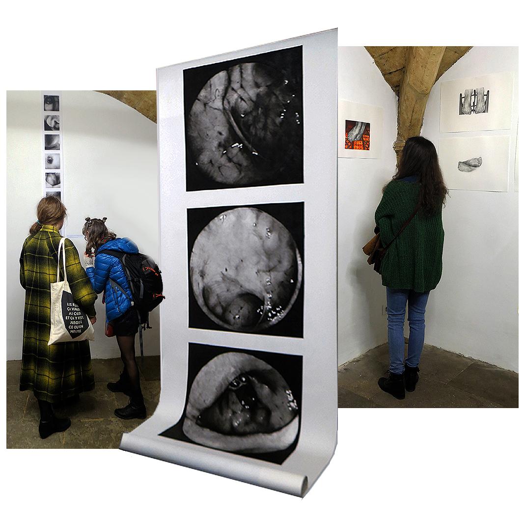 N5 galerie_le lieu multiple_musee Atger_exposition_Anatomies_Montpellier_Gisele Bonin_MC Conilh de Beyssac_2018