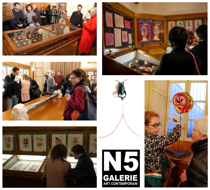 N5 galerie_le lieu multiple_musee Atger_exposition_Anatomies_Montpellier_vernissage_2018