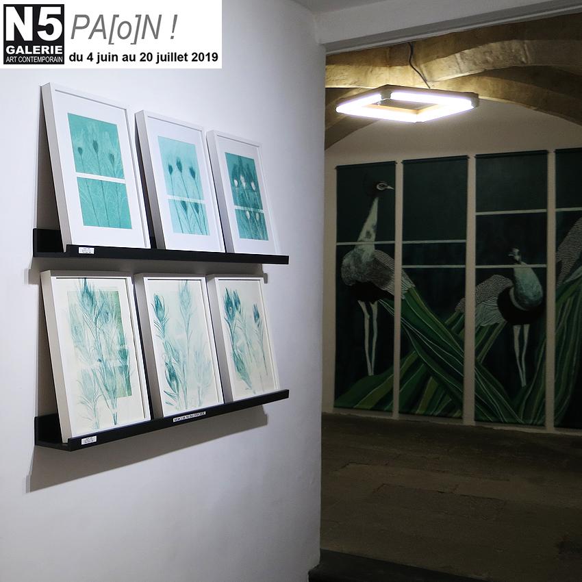 N5_galerie_Anne_Saligan_exposition_peinture_Montpellier_2019_9