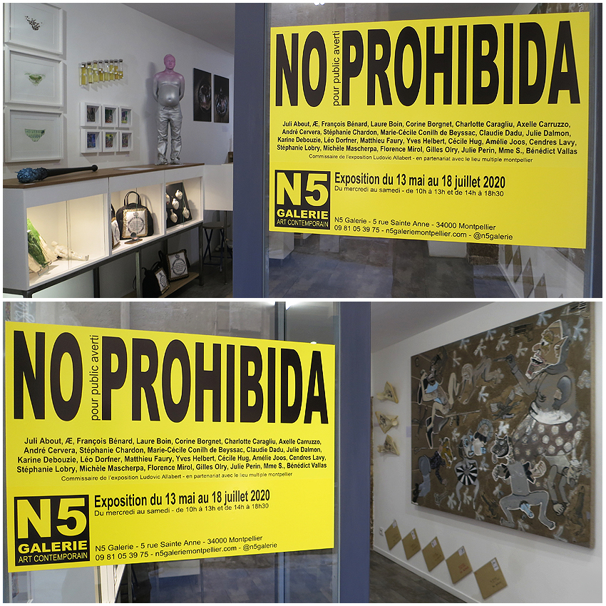 N5G_galerie_NO_PROHIBIDA_exposition_mai_montpellier_2020_14
